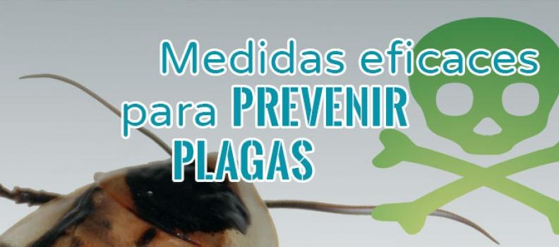 Cómo prevenir plagas en la comunidad de propietarios