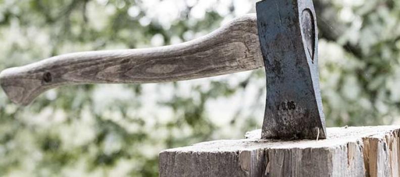 Talar árboles en una comunidad de propietarios